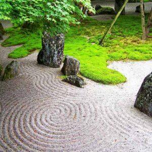 Razlicak-japanski-vrt