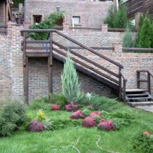 darwin-garden-design-idejna-resenja-vrtova-basti-i-dvorista