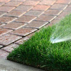 Razlicak-travnjak-podizanje-i-odrzavanje
