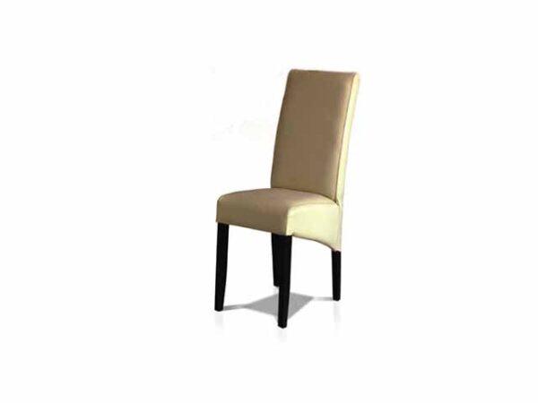 pegasus-stolica-kuba